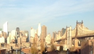 MY NYC Pic